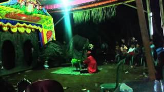 Download Macan kemiren Video
