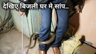 Download बिजली घर मे छुपा था सांप, फिर आप ही देखिए आगे क्या हुआ   Rescue indian rat snake from Ahmednagar Video