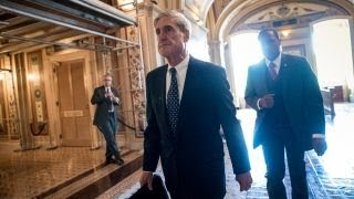 Download Why Mueller's team is ignoring Trump's attacks Video