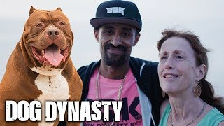 Download The Emotional Moment Hulk & Marlon Reunite With Mom | DOG DYNASTY Video