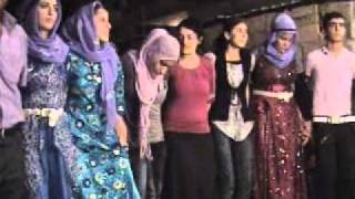 Download Medya yapim,koma zeman,viransehir dugun kaya ailesi halay hochzeit Video
