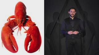 Download Creativity Technology Life and the illusions in-between | Alexandros Kallegias | TEDxAlexandroupolis Video