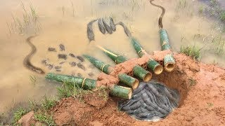 Download The first Trap Can Catch Alot of fish & Crabs And Eels By 5 Bambo With deep Hole Video