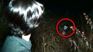 Download 11 Scary Forest Encounters Caught By YouTubers Video