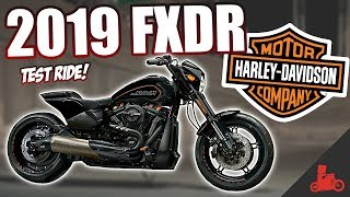 Download 2019 Harley-Davidson FXDR 114 (FXDRS) - Specs & Ride! Video