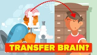Download Why Can't We Transplant Brains? Video