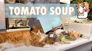 Download Making tomato soup Video