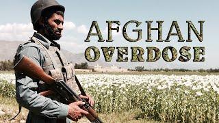 Download Afghan Overdose. Inside opium trade Video