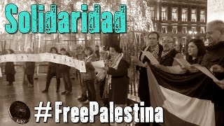 Download Día Internacional de Solidaridad con #FreePalestina en Madrid. Video