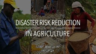 Download سلسلة السياسات: الحد من مخاطر الكوارث في الزراعة (مع الترجمة) Video