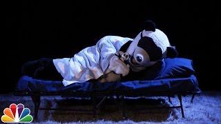 Download Audience Suggestion Box: Hashtag the Panda Hibernates, The British Bachelor Video