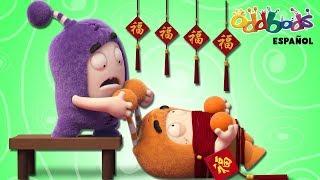 Download Año Nuevo Chino con Oddbods   Caricaturas Graciosas Para Niños Video