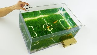 Download How to Make Unique Aquarium Football World Cup 2018 at Home Video