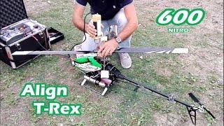 Download Elicottero RC | Align T-Rex 600 nitro | Prova accensione e volo dopo restauro completo! Video