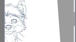 Download How to Draw a Furry Head Tutorial Video