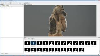 Download Agisoft Photoscan Pro - basic workflow Video