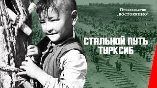 Download Стальной путь (Турксиб) (1929) документальный фильм Video
