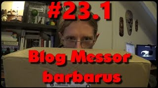 Download Blog Messor barbarus # 23.1 - Nouveau nid ! Video