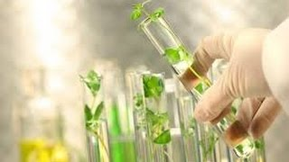 Download Plant Tissue Culture Video