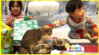 Download Meet our new cats and Ryan open presents on Christmas Morning 2017 Video