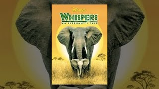 Download Whispers: An Elephant's Tale Video