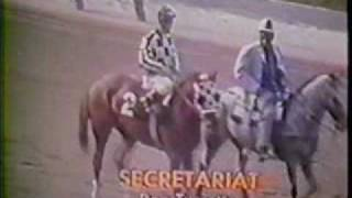 Download Secretariat A Moment of Eternity Video