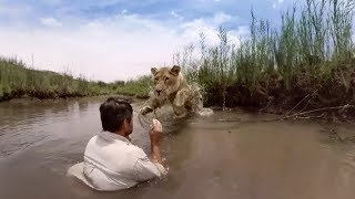 Download GoPro VR: For the Love of Lions Video
