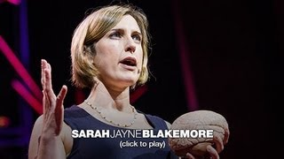 Download Sarah-Jayne Blakemore: The mysterious workings of the adolescent brain Video