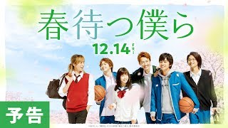 Download 映画『春待つ僕ら』予告【HD】2018年12月14日(金)公開 Video