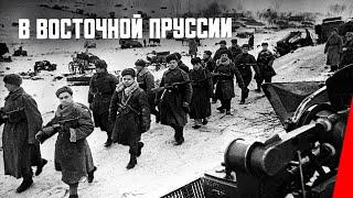 Download В Восточной Пруссии (фронтовой выпуск № 11) (1945) фильм Video
