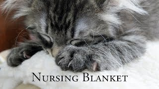 Download Nursing Blanket Video