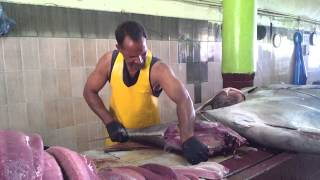 Download Maldives fish market-usman Video