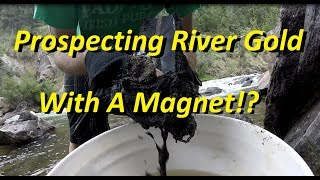 Download Prospecting River Gold With A Magnet!? Video