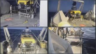 Download Dive #35 - Daikoku Seamount - FK161129 - SuBastian Video