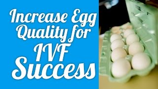 Download Increase Egg Quality for IVF success! Video