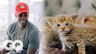 Download 2 Chainz Plays with $165,000 Kittens | Most Expensivest Shit | GQ Video