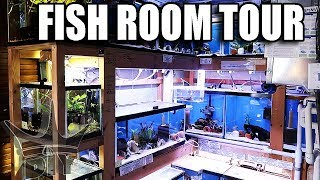 Download MOST Inspiring fish room EVER!! Video
