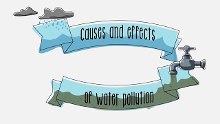 Download Causes and effects of water pollution Video