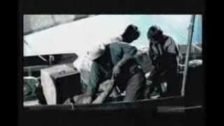Download The True Story Of Moby Dick Video