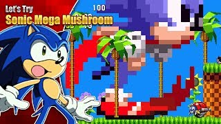 Download SONIC'S A MONSTER!? Let's Try Sonic 1 Mega Mushroom Edition Video