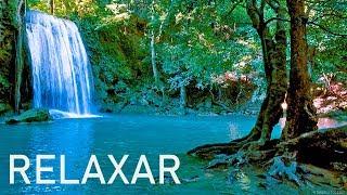 Download Música Relaxante 24/7 🔴 Sinta-se em Paz - Relaxar e Dormir 3 Video