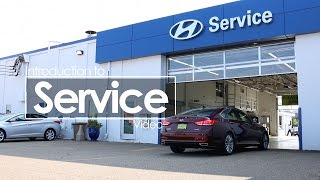 Download Service Introduction Video | Morrie's 394 Hyundai Video