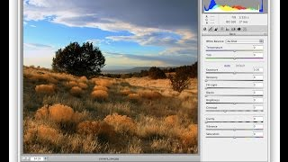 How to install camera raw filter to Adobe Photoshop cs6 Free