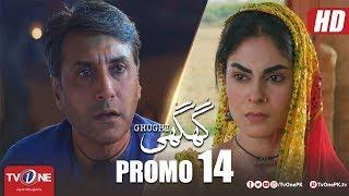 Download Ghughi Episode 14 Promo | TV One | Mega Drama Serial | 19 April 2018 Video