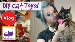 Download How to Make Two Easy DIY Cat Toys! The Easiest Cat Toys to Make! Video
