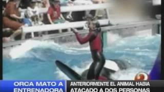 Download ORCA MATO A ENTRENADORA 25-02-10 Video