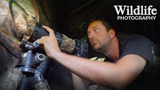 Download I DID NOT EXPECT THIS | Wildlife Photography behind the scenes - photographing from my photo blind Video