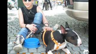 Download Ja- ich bin stolz einen Listenhund zu haben Video