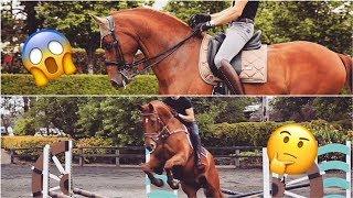 Download DRESSAGE HORSE TRIES SHOWJUMPING || MATT HARNACKE - PART 2 Video