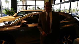 Download 2018 Lexus NX300 Smart Key convenience Video